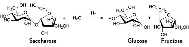 Saccharose Formel