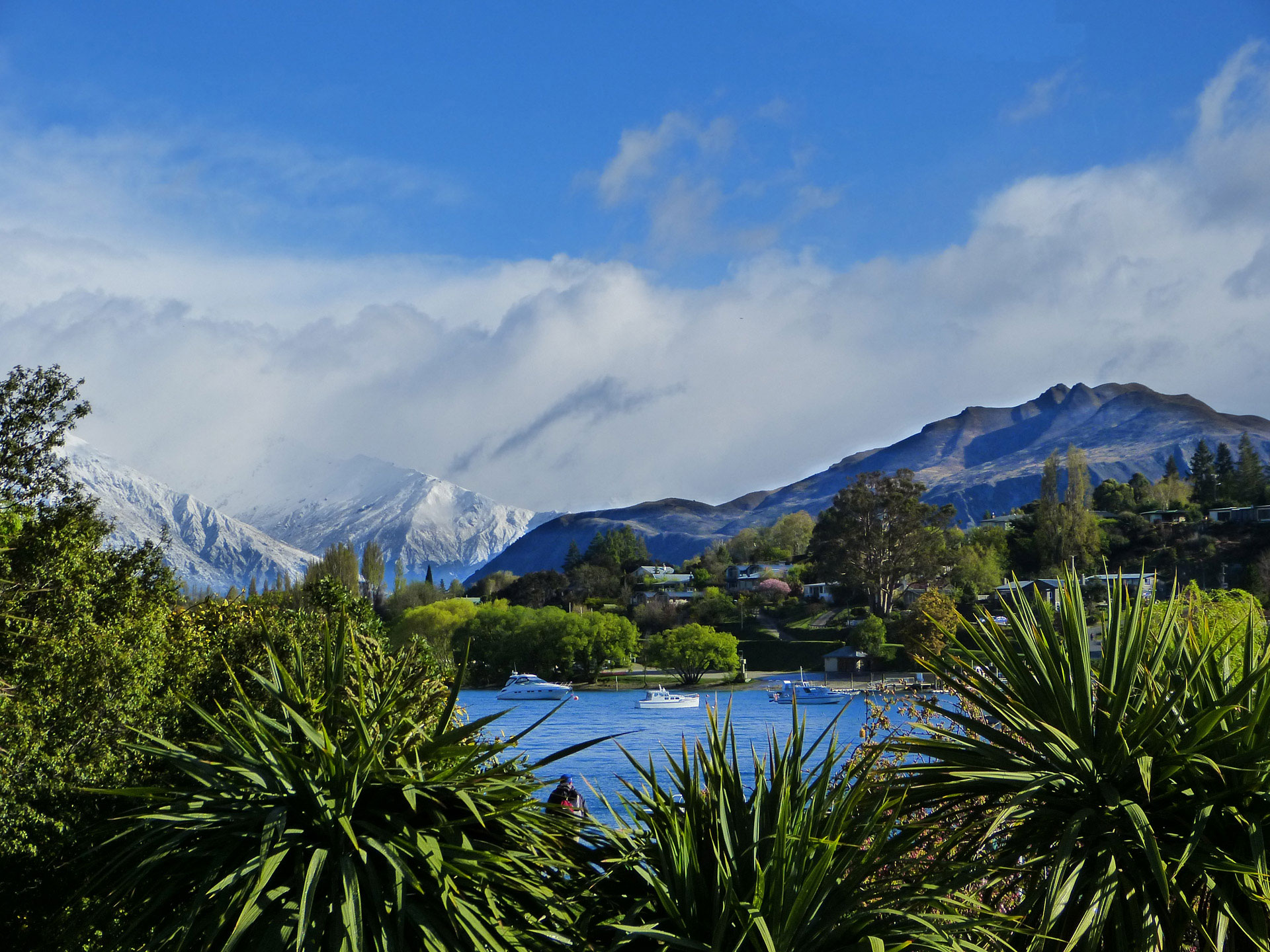 Neuseeland Südinsel Lake Wanaka